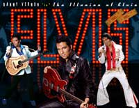 The Illusion of Elvis by Danny Vernon